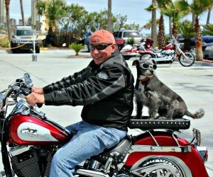 Thunder Beach Motorcycle Rally in Panama City Beach FL