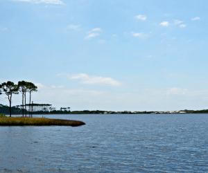 Rare coastal dune lake on Hwy 30a