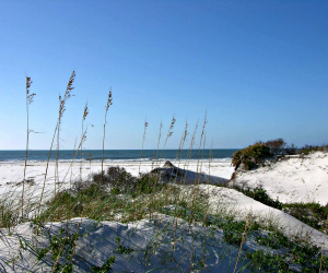 Bon Secour one of ten easy day trips from Gulf Shores AL